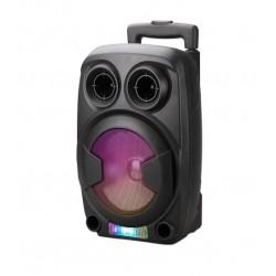 Subwoofer Speaker Mtk Ft712 Black 12w, Fm / usb / audio / microphone